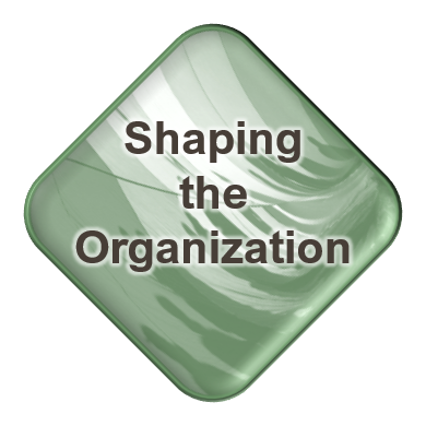Shaping the Organization
