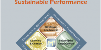 Organizing for Sustainable Performance
